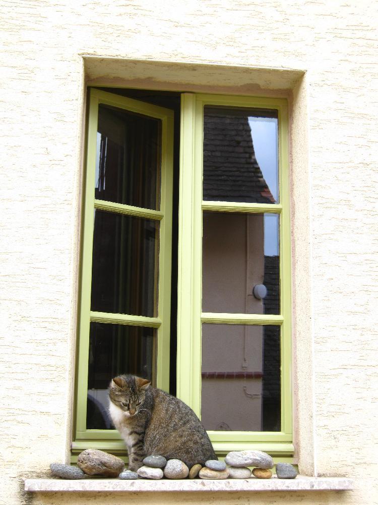 Bad Bibra Bauernhaus Holzfenster mit Sprossen und Leinölfarbe